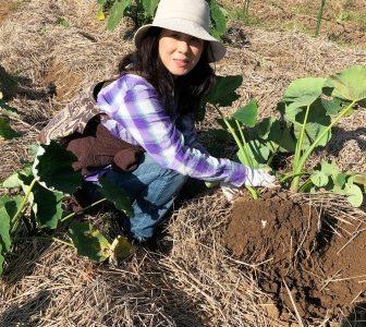 マナに満ちた土に触れてグラウンディング:豊受自然農・農業体験に行ってきました☆彡