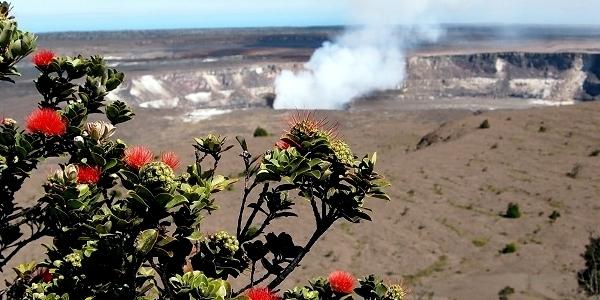 ハワイの神話 1: 「ペレの旅」