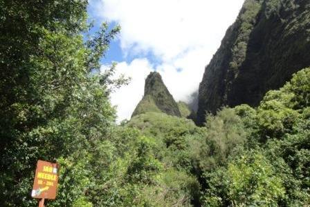 ハワイの聖地 1: イアオニードル