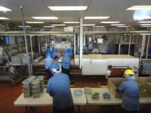 マウナロア工場3