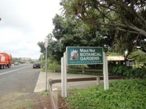 Maui Nui Botanical Garden1