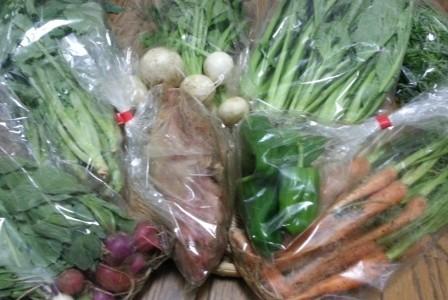 豊受自然農の野菜が届きました☆