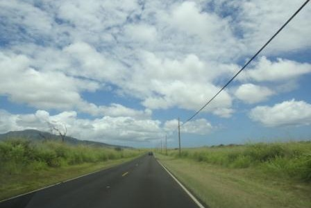 ハワイの諺 13: 'Olelo No'eau