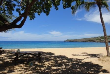 ハワイの諺 17: 'Olelo No'eau