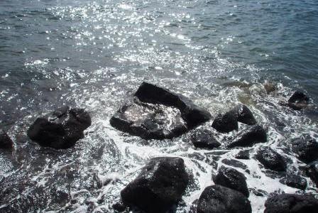 フラレア・ハワイアンカルチャー「ハワイ神話講座」