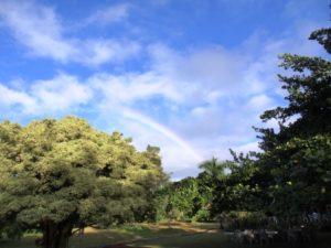 カラニの虹