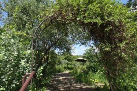 ハーブのお勉強に:生活の木 薬香草園