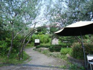 薬香草園2