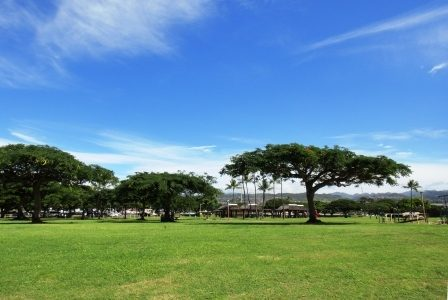 ハワイの諺 20: 'Olelo No'eau & LaniLaniさんでコラム連載のお知らせ☆彡