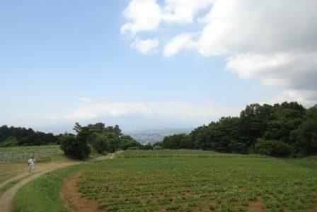 豊受自然農体験ツアーに行ってきました☆
