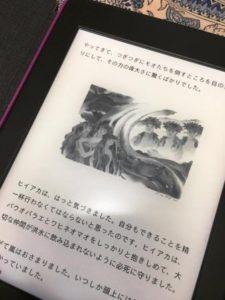 Kindle - コピー