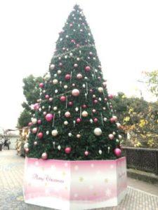 クリスマスツリー飯田橋 - コピー