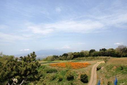 豊受自然農カレンデュラ花摘み・農業体験ツアーに参加してきました☆彡