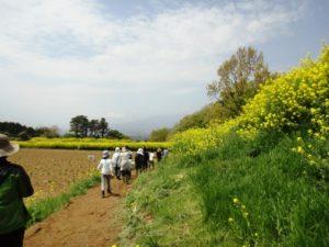 豊受農園6