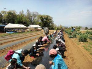 豊受農園2