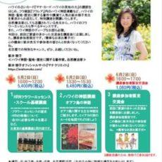 今週の日曜日(6月2日)、名古屋でHRNフラワーエッセンス基礎講座 & ハワイ神話講座を開講します☆彡