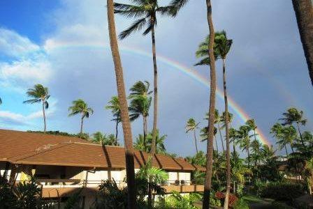 今日は節分。豆まきと恵方巻き & ハワイ神話・歴史・ハワイ語などハワイ基礎知識を学ぶ機会を☆彡