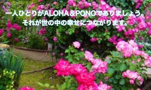 ハワイの諺 27: 'Olelo No'eau  & 本を読みましょう☆彡
