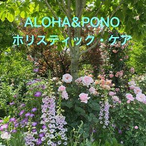 「ティ栽培」「ハワイ神話2」講座のご案内 & ハワイでこの夏、ホクレア号のナンバープレート登場!